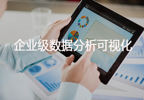 企业级数据分析可视化