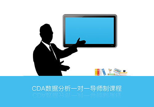 CDA数据分析一对一导师制课程