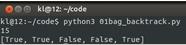 Python基于回溯法解决01背包问题实例
