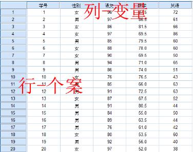 SPSS数据录入对格式的要求