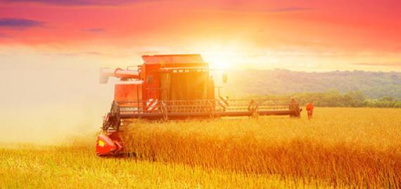 气候变化时代的大数据农业