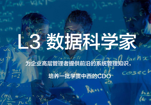 L3 数据科学家-CDO