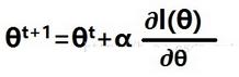 弱分类器的强势体:<font color=