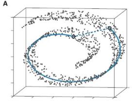 机器学习中的降维算法:ISOMAP & MDS