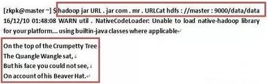 从HadoopURL中读取数据