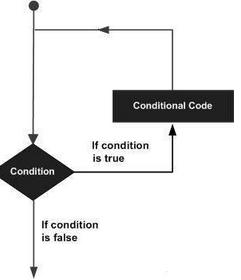 R语言循环