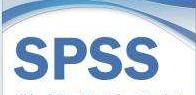 SPSS复杂样本:复杂样本统计过程