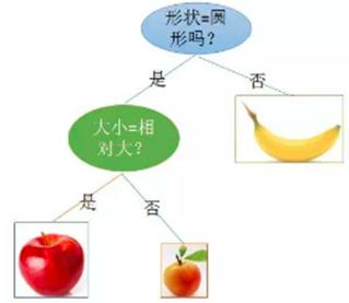 机器学习:谈谈决策树