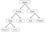 Python面向对象编程之继承与多态详解