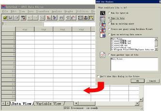建立一个SPSS数据文件